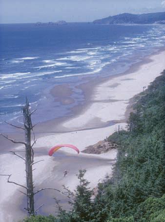 Cape Lookout State Park Oregon Com