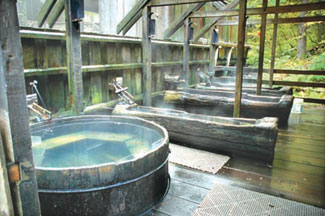 Bagby Hot Springs   Oregon com