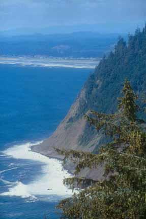 Tillamook Head Oregon Com