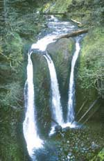 Oneonta Creek's Triple Falls