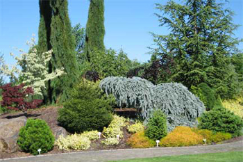 Oregon Garden in Silverton Oregon