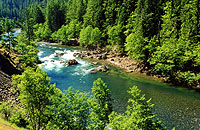 North Santiam River © Photo courtesy of Mt. Hood National Forest
